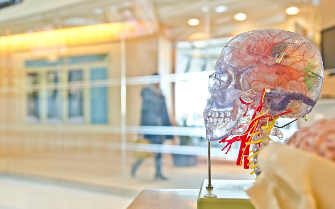What is Brain Mapping and How Can It Help You?