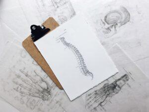 chiropractor west palm beach